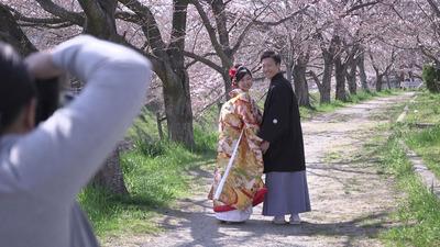 色打掛&白無垢 桜並木で前撮り